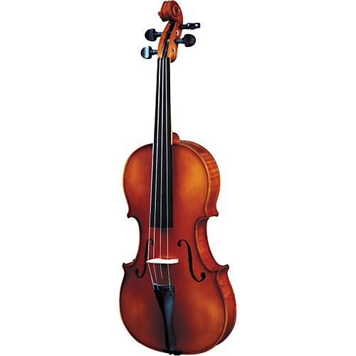 Strunal 1750 FH Concert Violin Outfit