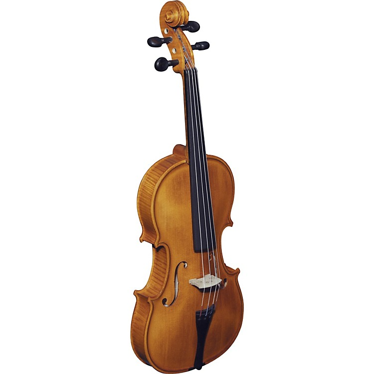 Strunal193W Concert Series Violin Outfit