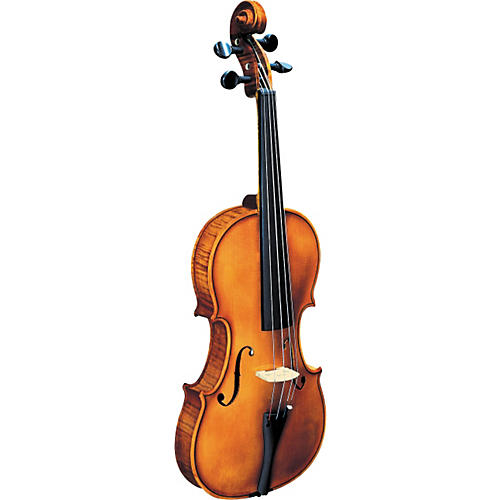 Strunal 193WA BH Concert Violin Outfit