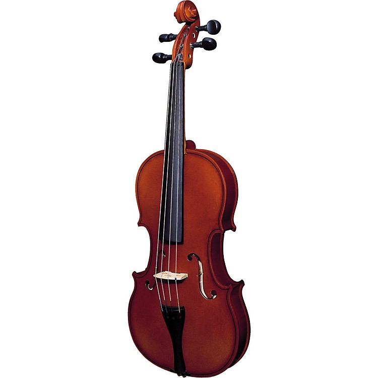 Strunal 220 Series Violin Outfit