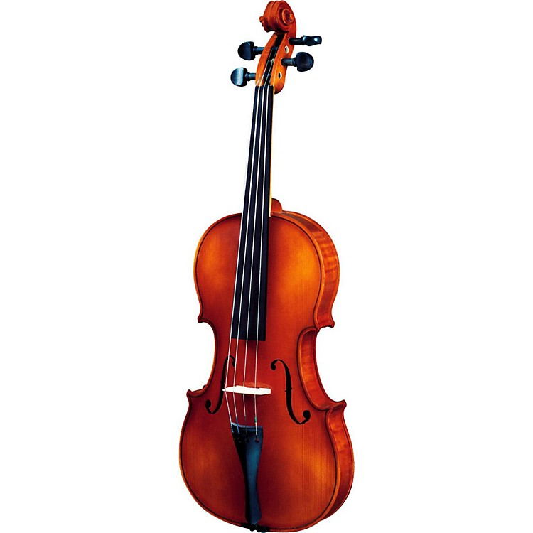 Strunal 260 Series Violin Outfit 4/4 Outfit