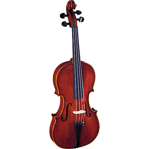 Strunal 3310 Concert Series Violin Outfit