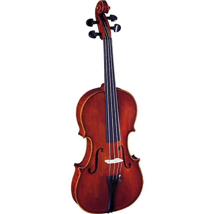 Strunal 3310 Concert Series Violin Outfit 4/4 Outfit