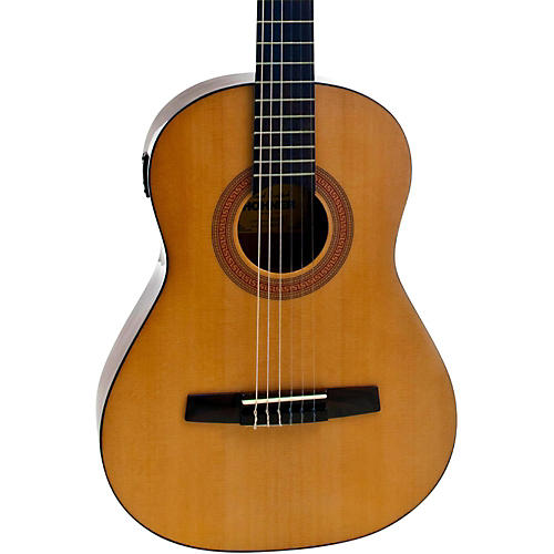 3 4 Size nylon string guitar computer will