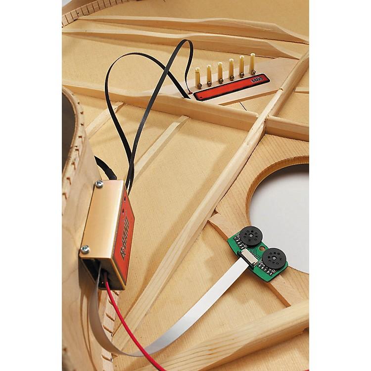 B-BandA2.2 XOM Acoustic Guitar Preamp