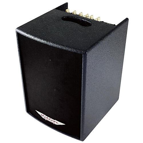 Ashdown AA-100 BLK 100W 1x8 Acoustic Guitar Combo Amp w/HF Tweeter