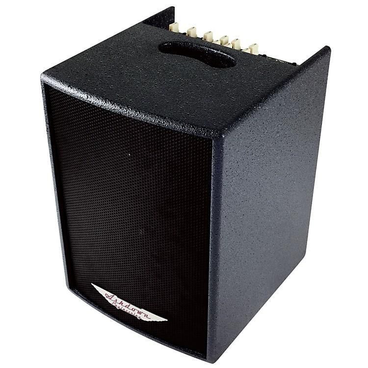 AshdownAA-100 BLK 100W 1x8 Acoustic Guitar Combo Amp w/HF Tweeter