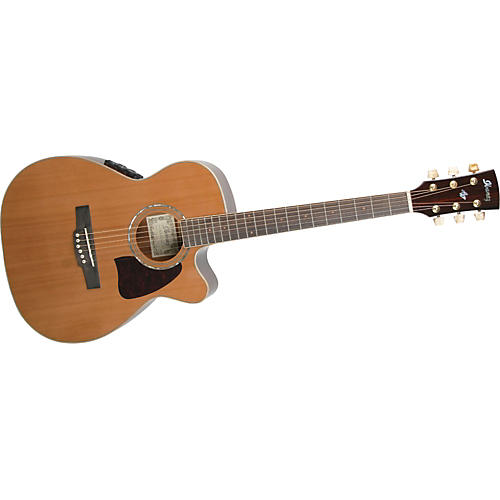 Ibanez AC35ECENT ARTWOOD SERIES Acoustic-Electric Guitar