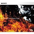 Sony ACID Loop Steve Tibbets: Friendly Fire thumbnail