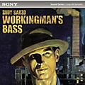 Sony ACID Loops - Rudy Sarzo: Workingman's Bass thumbnail