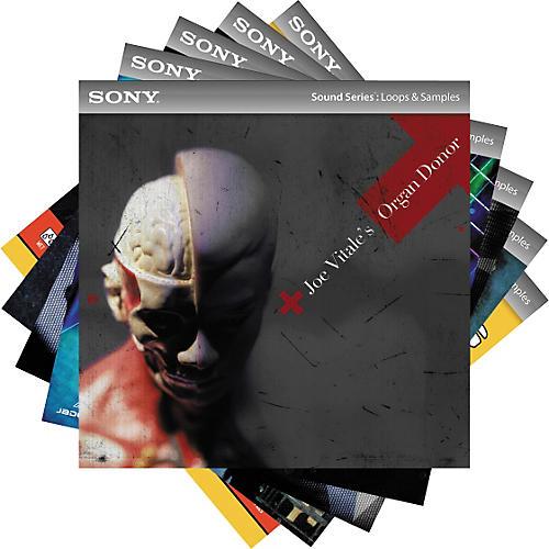 Sony ACID Loops - Songwriter's Pack