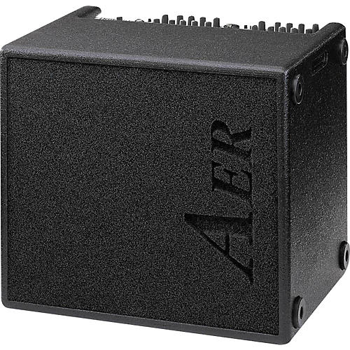 AER AER Domino 2A 100W 2x8 Acoustic Guitar Combo Amp-thumbnail