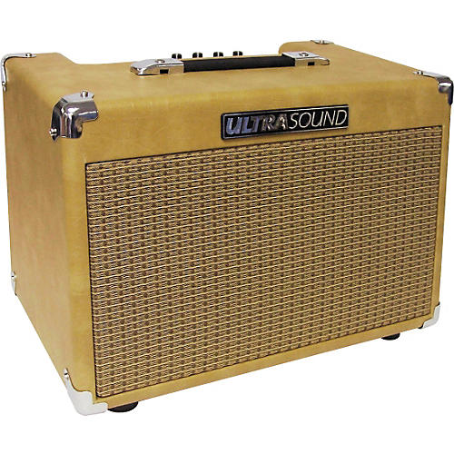Ultrasound AG-30 30W Acoustic Guitar Amp