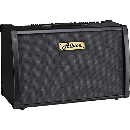 Albion Amplification AG Series AG80DFX 80W Guitar Combo Amp