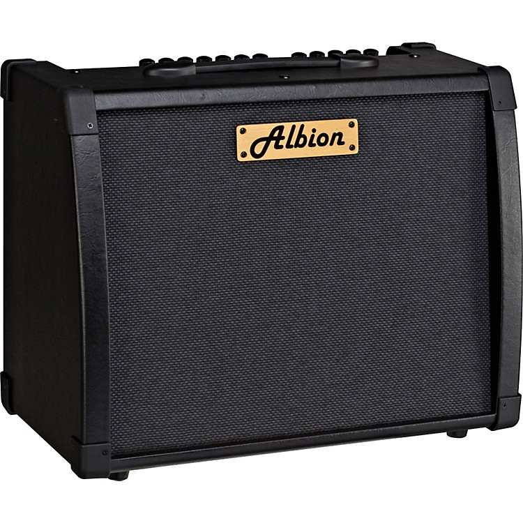 Albion Amplification AG Series AG80R 80W Guitar Combo Amp