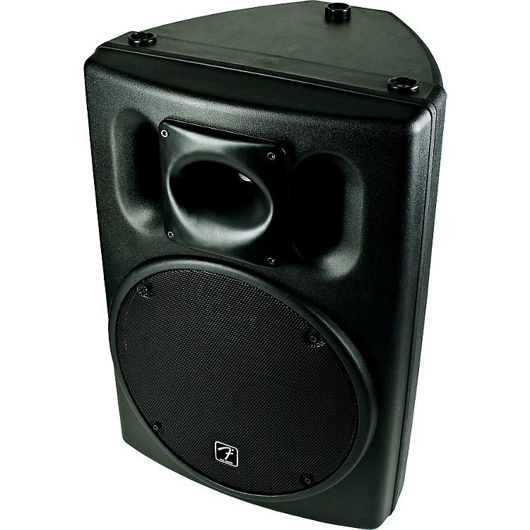 FenderAce 1515 2-Way Speaker Cabinet