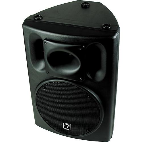 Fender Ace 2012 2-Way Speaker Cabinet-thumbnail