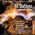 Q Up Arts Ambient Realms Acid WAV CD ROM  Thumbnail