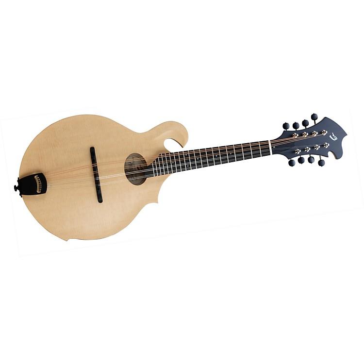 BreedloveAmerican FO Mandolin with LR Baggs Radius Pickup