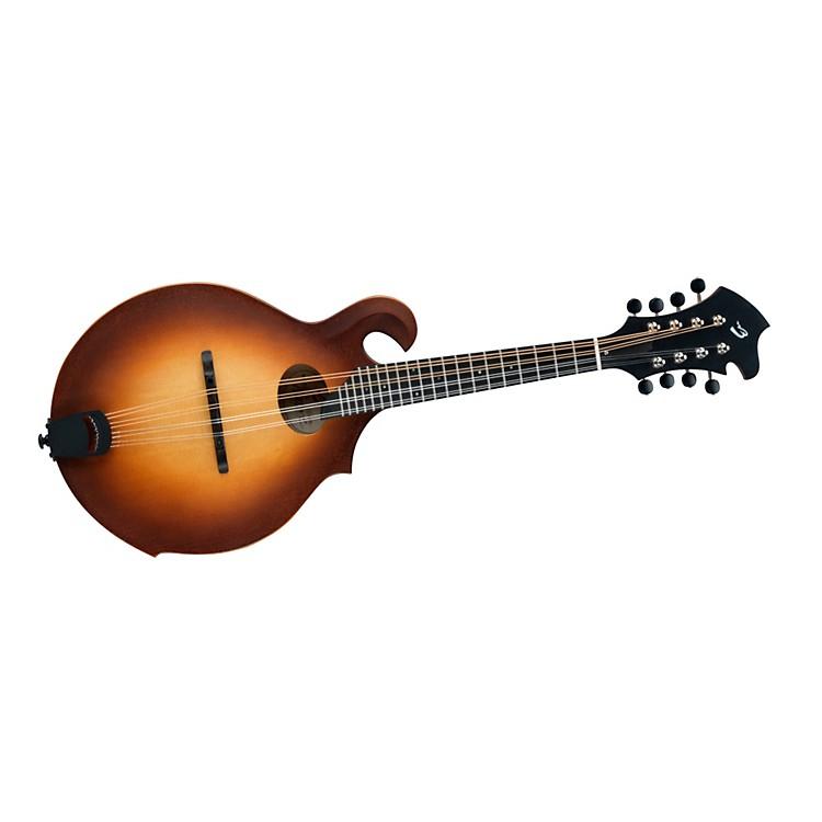 BreedloveAmerican FO VTG F-Style  Mandolin