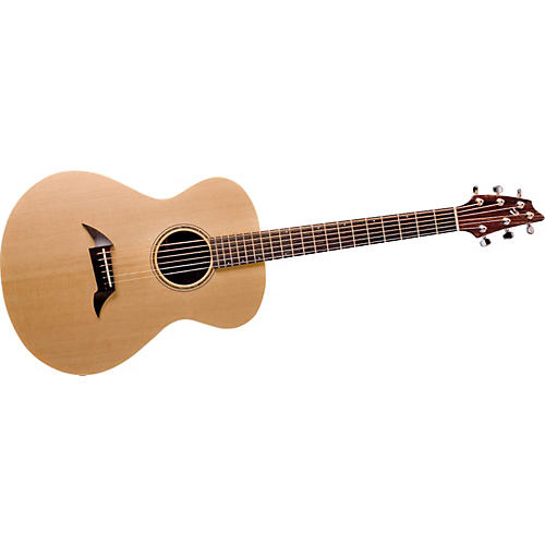 Breedlove American Series C20/SM Acoustic Guitar-thumbnail