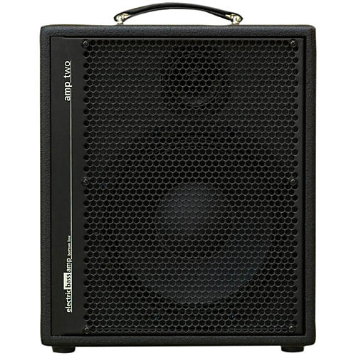 AER Amp-Two 240W Bass 1x12 Combo Amp-thumbnail