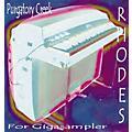 Tascam BG: Rhodes Piano Giga CD-thumbnail