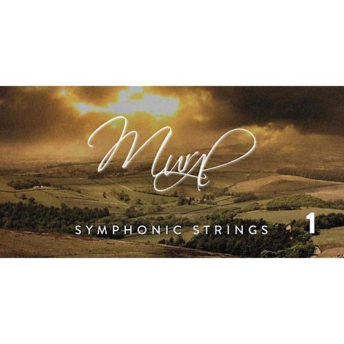 Spitfire BML Symphonic Strings Mural 1-thumbnail