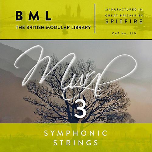 Spitfire BML Symphonic Strings Mural 3