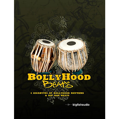Big Fish Bollyhood Beats Sample Library