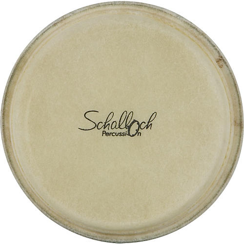 Schalloch Bongo Buffalo Skin Replacement Head-thumbnail