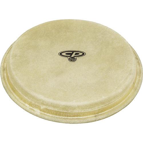 CP Bongo Head-thumbnail
