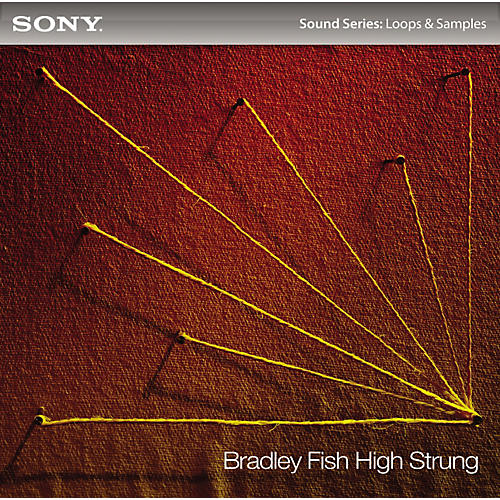 Sony Bradley Fish: High Strung-thumbnail