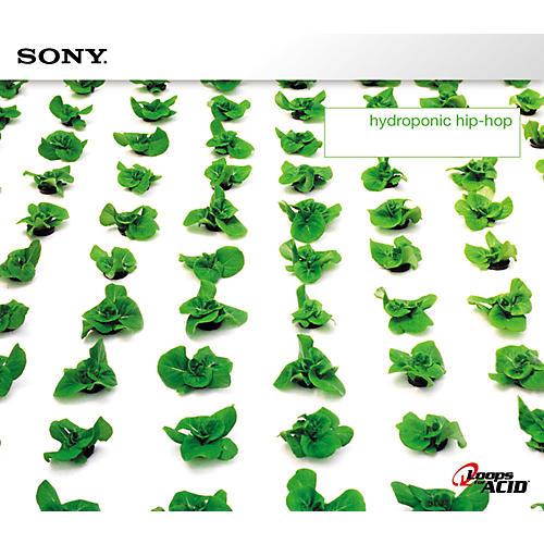 Sony Brian Daly: Hydroponic Hip-Hop Acid Loop CD-thumbnail