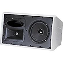 JBL C29AV-1 Control 2-Way Indoor/Outdoor Speaker