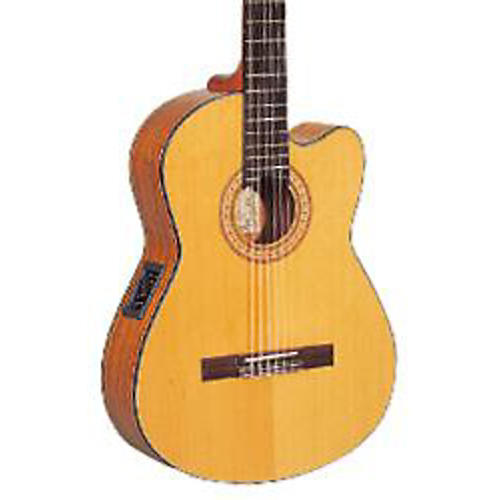 Washburn C40 Review | Good Entry-Level Classical Guitar?