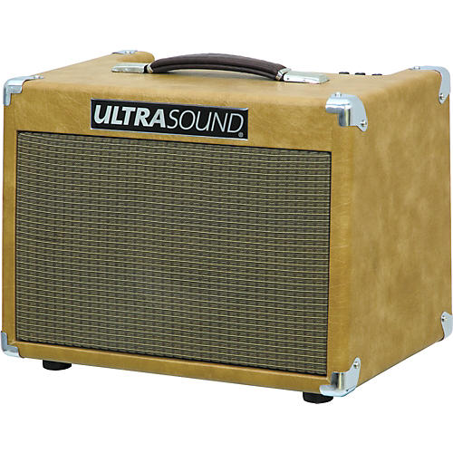 Ultrasound CP-100 Acoustic Guitar Combo Amplifier
