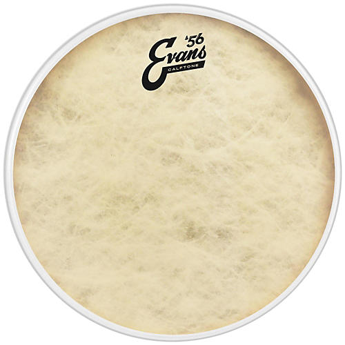 Evans Calftone Drum Head-thumbnail