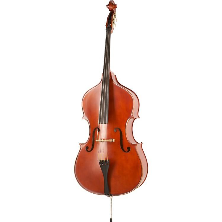 FloreaCarpathian Double Bass Outfit