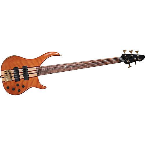 Peavey Cirrus 5 5-String Fretless Bass Guitar