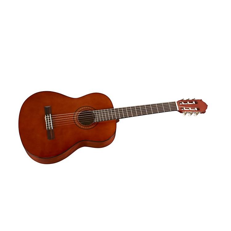 Jay TurserClassical Acoustic Guitar