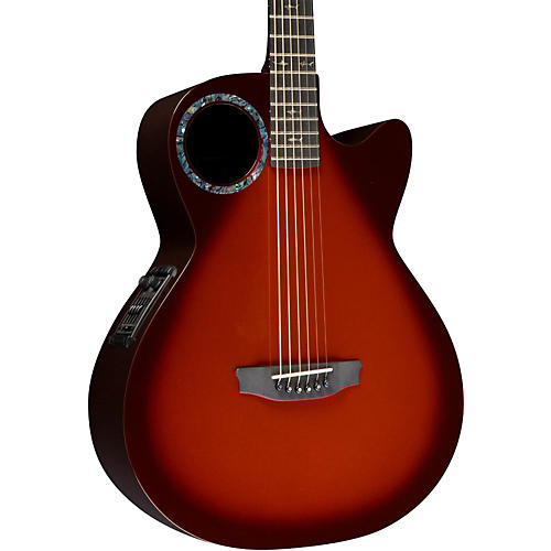 RainSong Concert Series CO-WS1005NS Acoustic-Electric Guitar-thumbnail