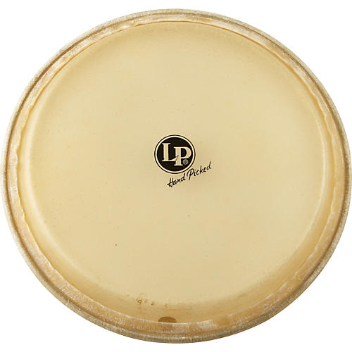 LP Conga Head 11 in.