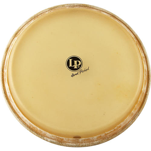LP Conga Head 11.75 in.