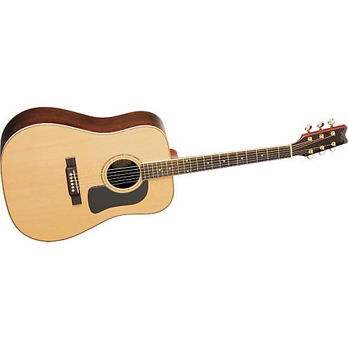 Washburn D10SDL Deluxe Dreadnought Acoustic Guitar w/case