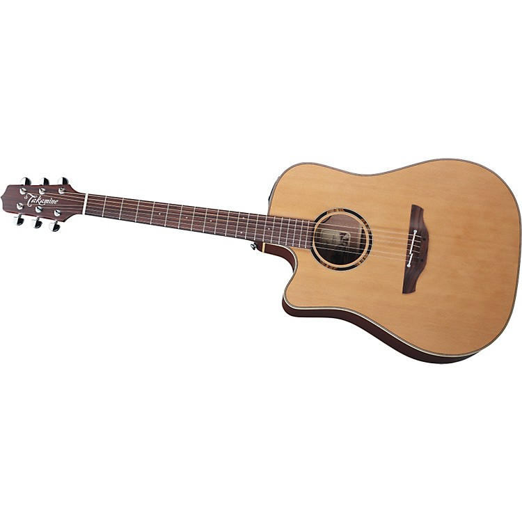 TakamineDreadnought ETN10C-LH Acoustic-Electric Guitar Lefty