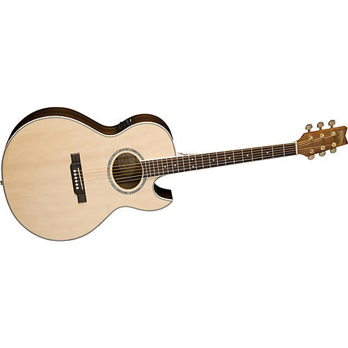 Washburn EA10SDLK Festival Acoustic-Electric Guitar-thumbnail