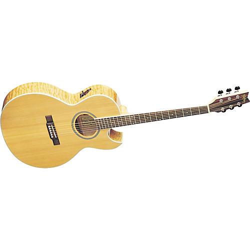 Washburn EA20SDL Acoustic-Electric Guitar