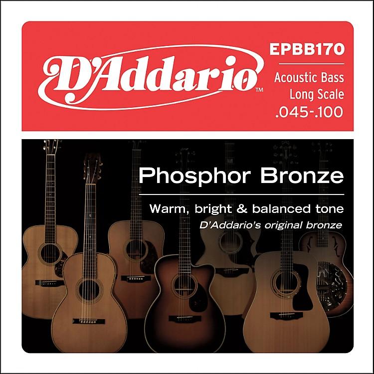 D'AddarioEPBB170 PB Soft Acoustic Bass String Set