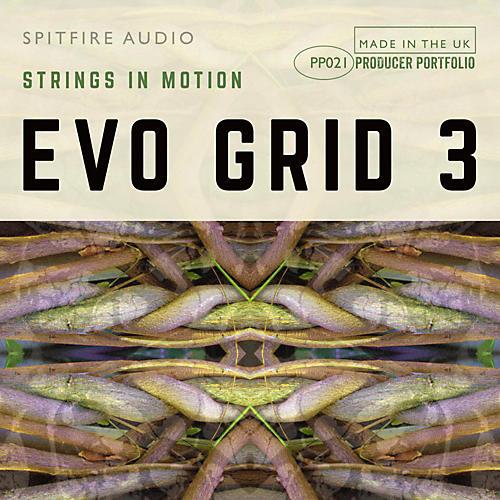 Spitfire EVO GRID 3-thumbnail